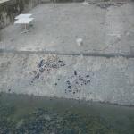 ดูแล-ปรับปรุง-ซ่อมแซมสระว่ายน้ำ (12)
